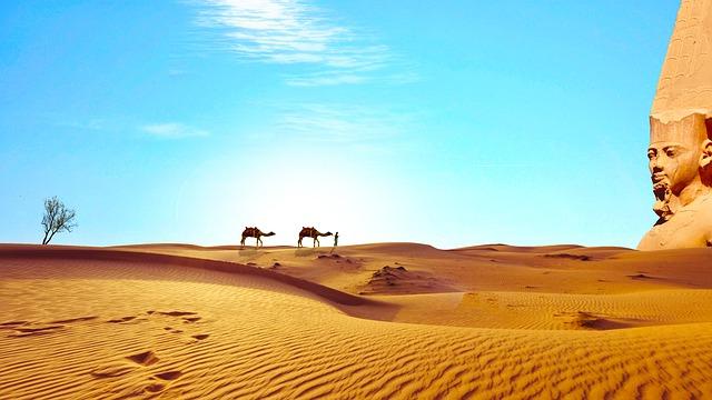 velbloudi na poušti.jpg