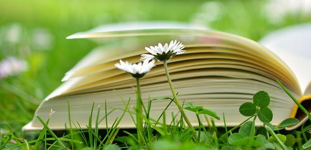 kniha v trávě