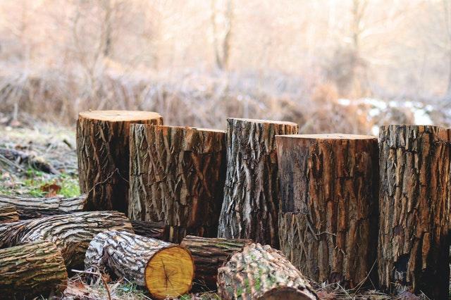 dřevěné špalky